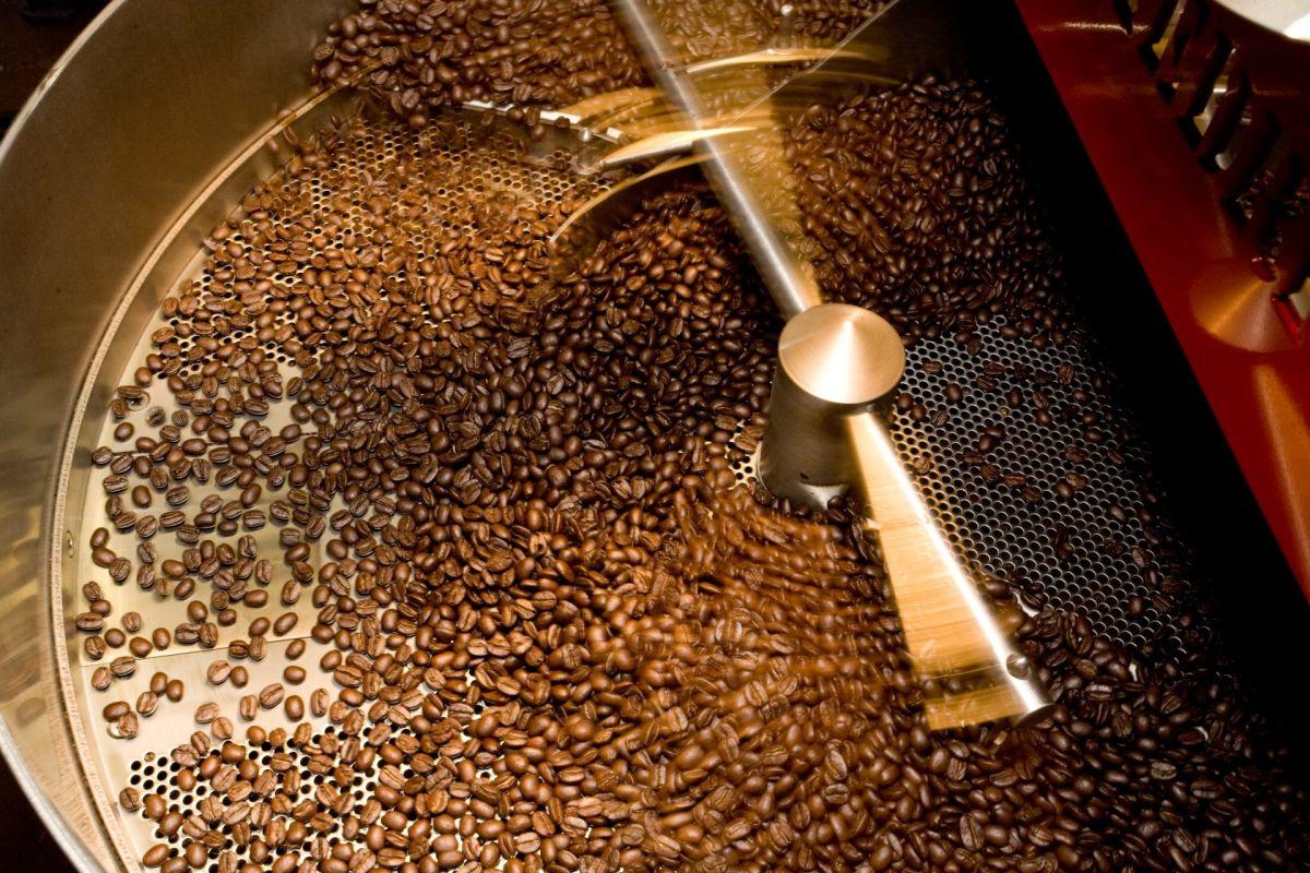 coffeeroaster-265