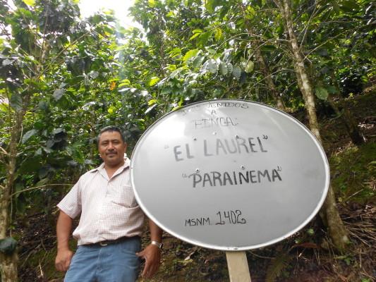 Oscar Daniel Ramirez Valerio (C) Alliance for Coffee Excellence
